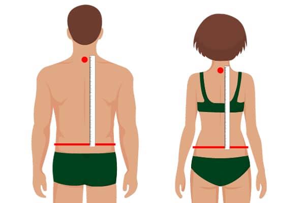 Rückenlänge messen