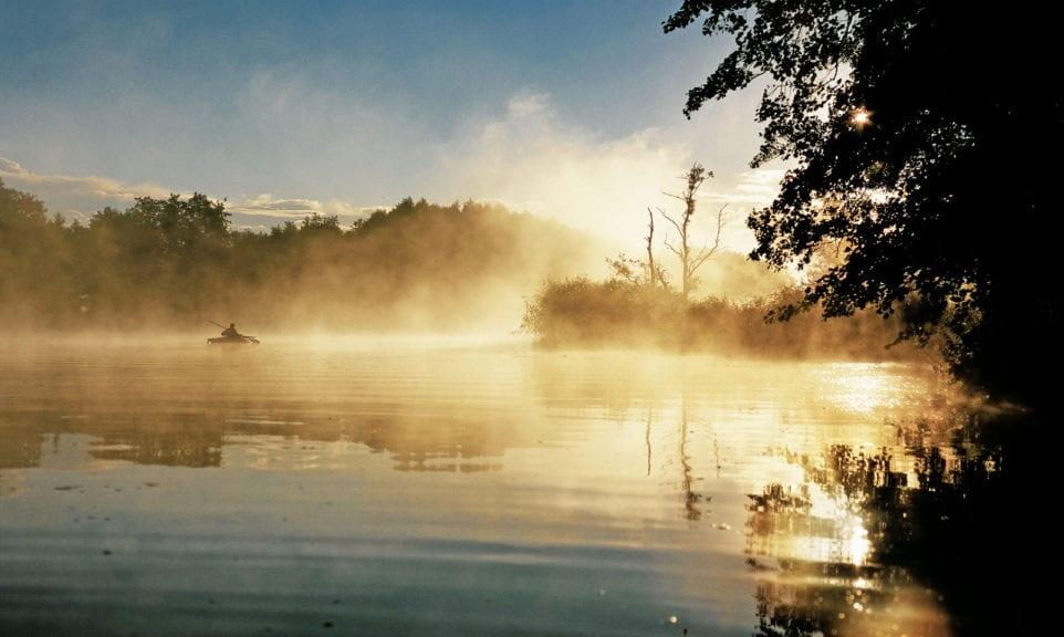 Wilde Ruhe und stilles Wasser auf der Peene
