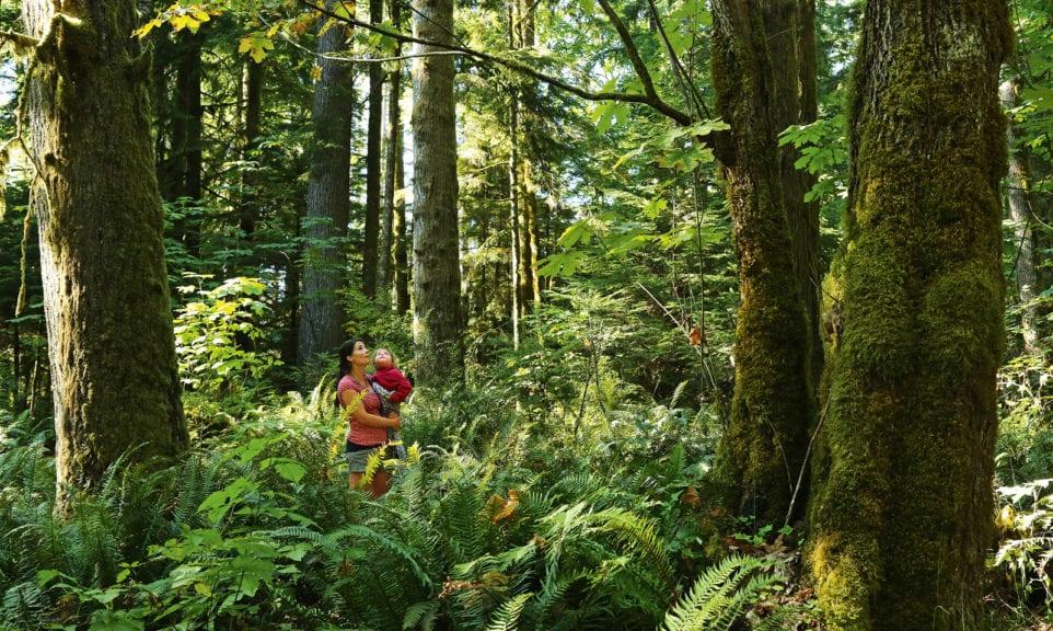Waldkindergarten auf Amerikanisch