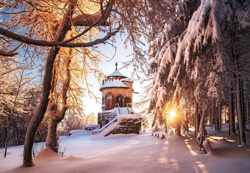 Die Braunen Stiefel Der Männer Im Schnee, Vergessene Im Wald
