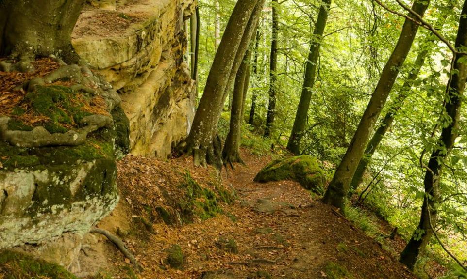 Grün, grüner, Luxemburg