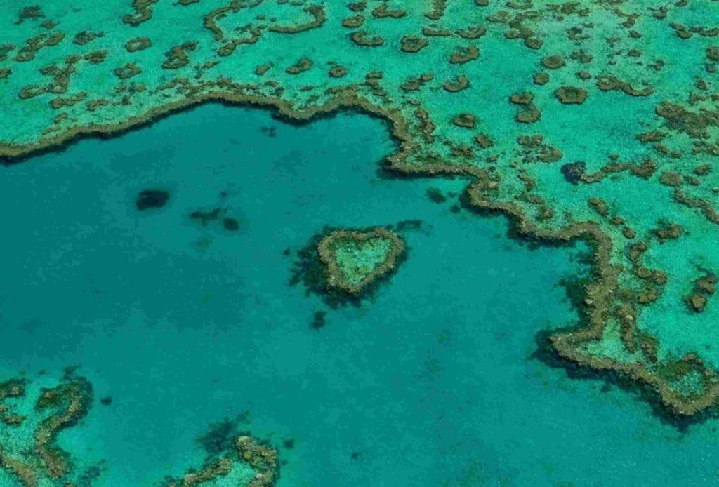 Great Barrier Reef Airlie Beach