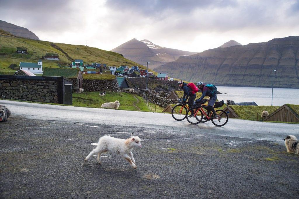 Bikepacker auf Gravelbikes auf den Faröer Inseln.