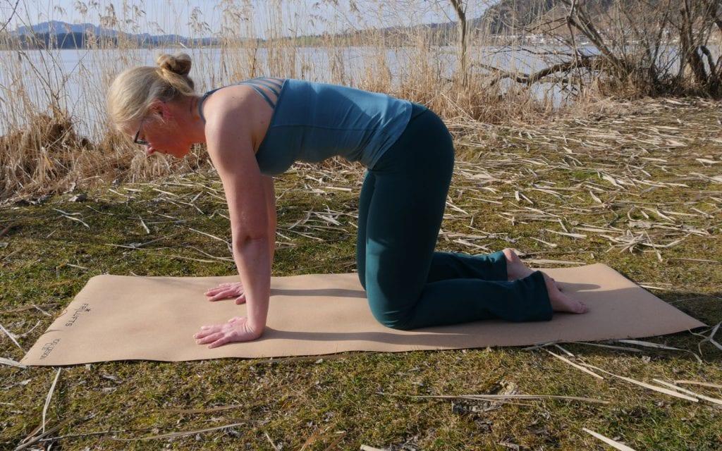 Yoga-Übungen für Anfänger. Ausgangsposition Vierfüßlerstand