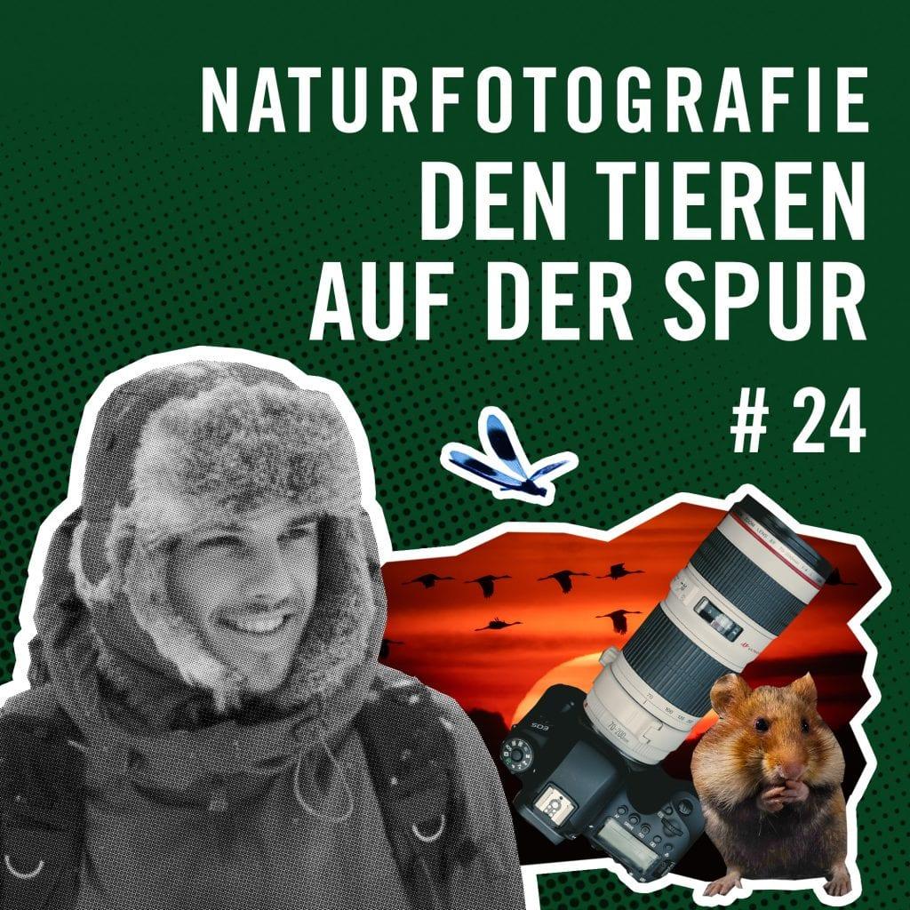 Cover Podcast Rausgehört Naturfotografie den Tieren auf der Spur