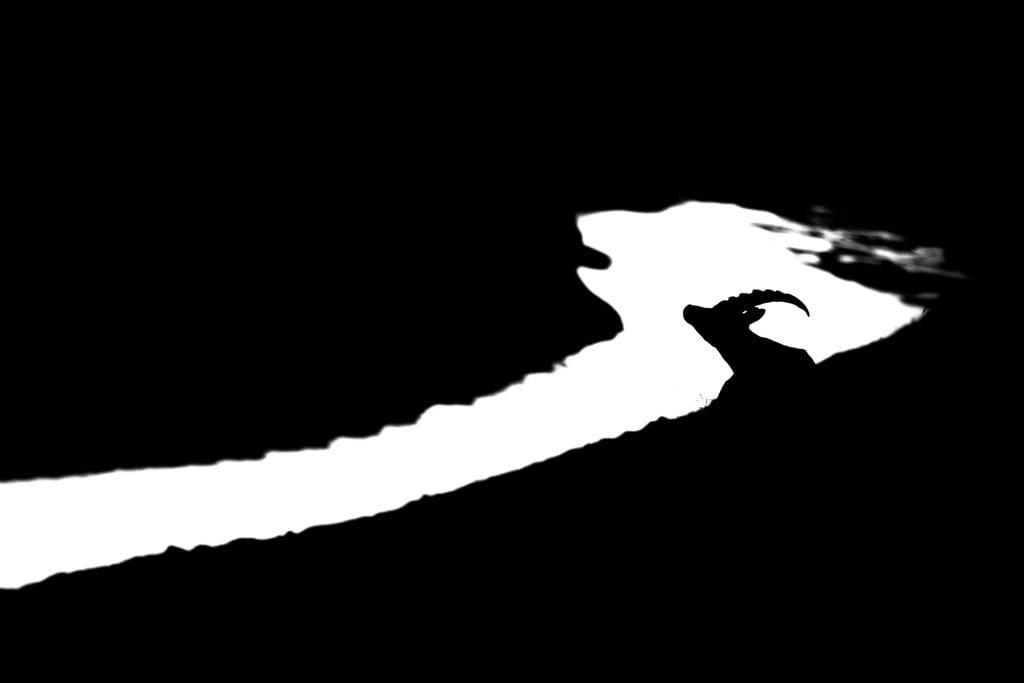 Steinbock in schwarz weiß dargestellt