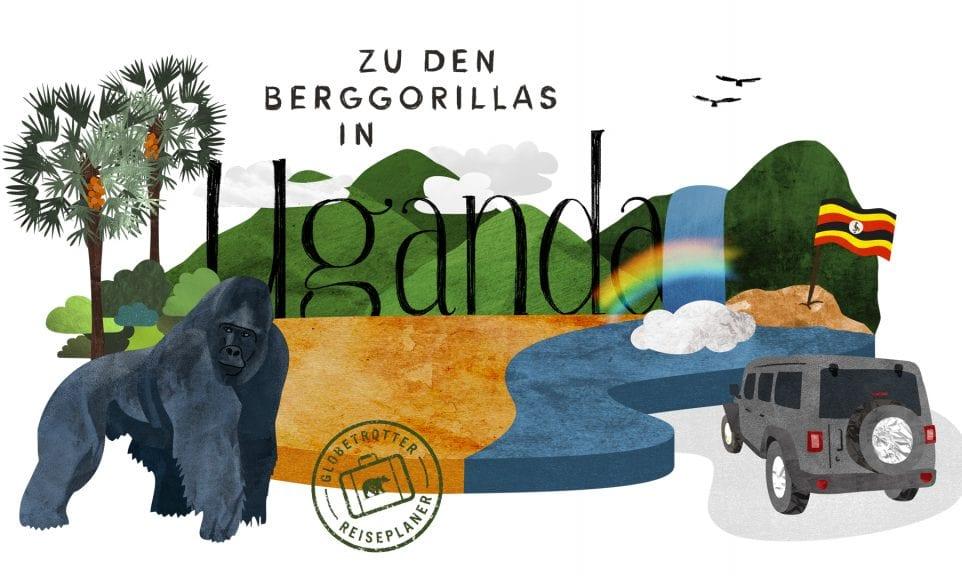 Planer: Zu den Berggorillas in Uganda