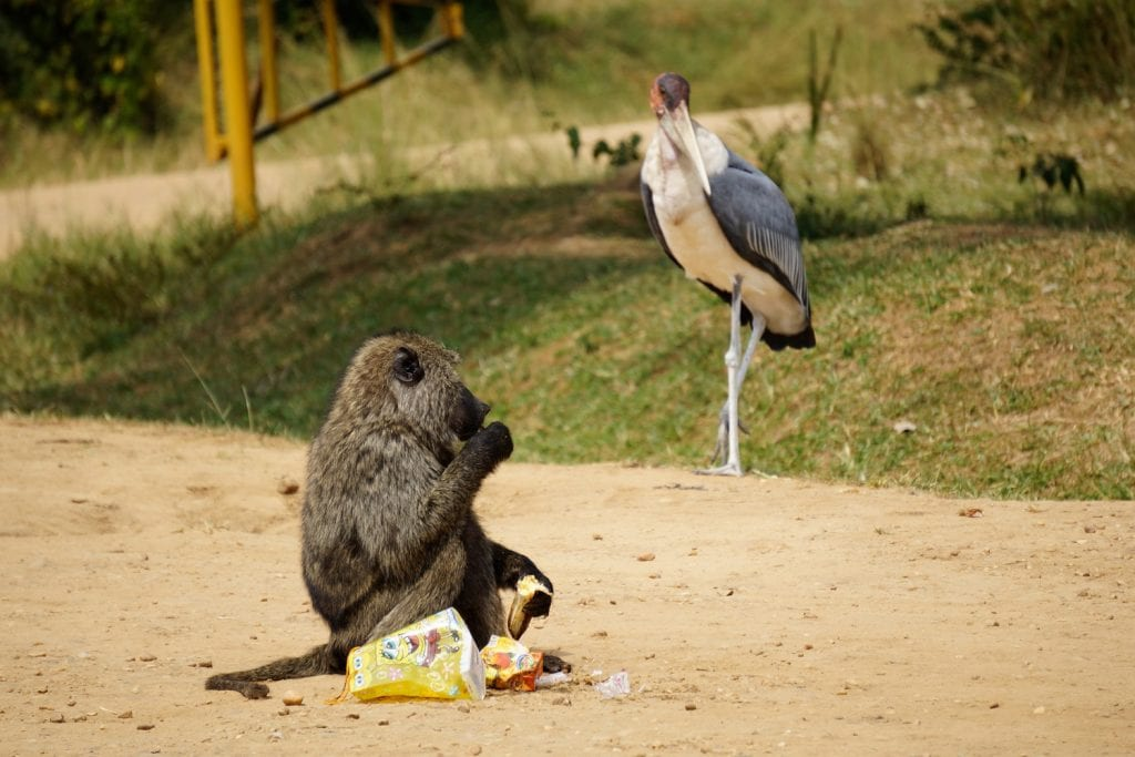Uganda-Rottmann-Streetlife-2