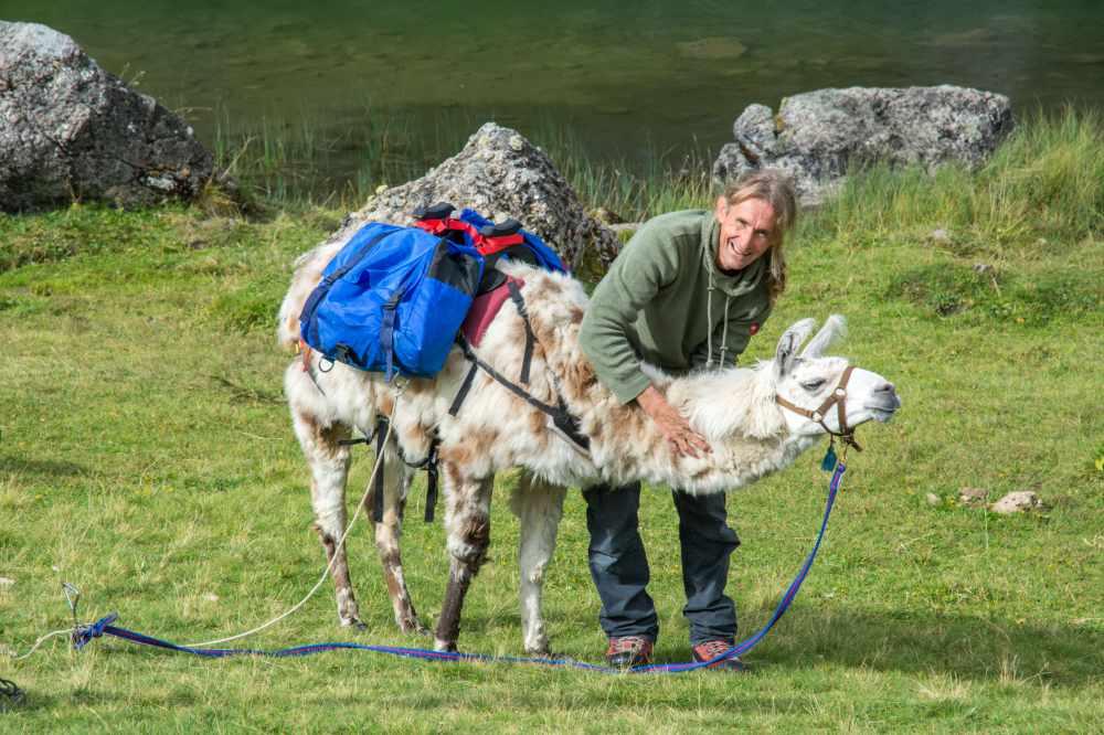 Hugo lebte lange in Südamerika und hat seine Leidenschaft für Lamas von dort mitgebracht.